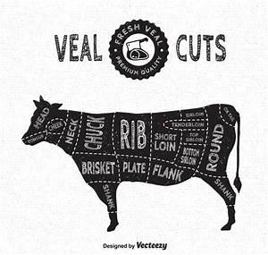 Veal Cuts Vector Diagram En Estilo Vintage