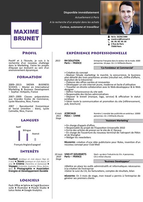 Modele Cv Gratuit by Modele Cv Gratuit Avec Open Office Sucredesign