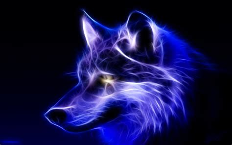 Blue And Purple Wolf Wallpaper by Blue Wolf Wallpaper