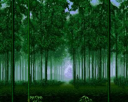 Forest Bamboo Background Pixel Gifs Tamil Unknown
