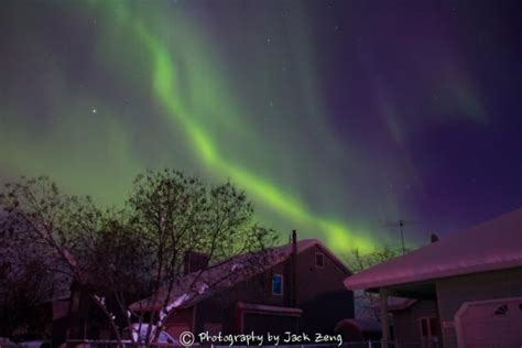 alaska northern lights tour alaska northern lights tour picture of alaska northern