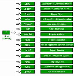 Linux File Hierarchy Structure