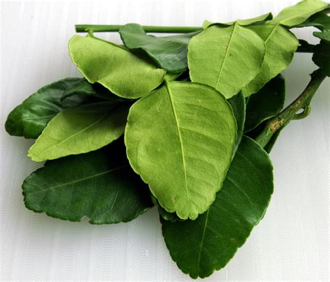 lime leaves tom yam recipe