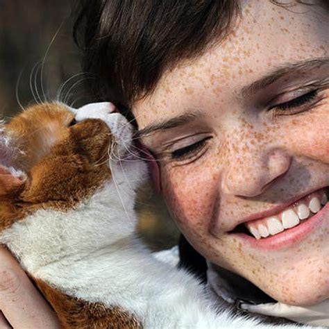 behaviorist  ways cats show affection  people