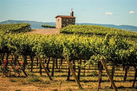 washington wines seattle