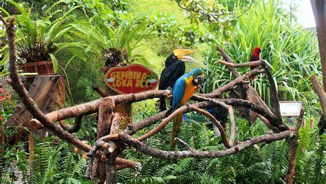 taman pintar gembira loka zoo taman pelangi singgah