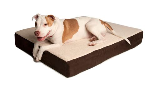 orthopedic dog bed mat best puppy food dog beds and