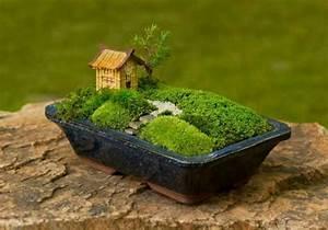 emejing idee jardin japonais miniature images design With mini jardin zen interieur