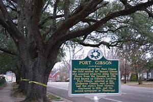 Ms Access Books Port Gibson Mississippi Natcheztracetravel Com