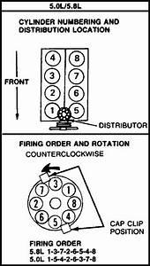 1992 Ford F 150 Engine Diagram 5 8 : help i need a 96 f150 5 0 spark plug firing order diagram ~ A.2002-acura-tl-radio.info Haus und Dekorationen