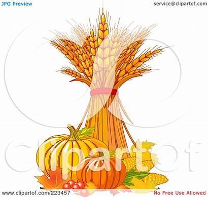Wheat Harvest Bundle Clipart Vegetables Illustration Rf