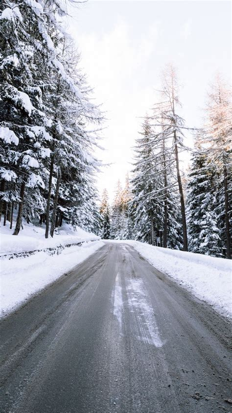 Snow Wallpaper Iphone Hd by Wallpaper 750x1334 Road Snow Winter Trees