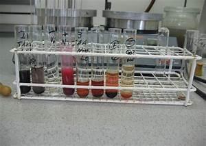 Wellenlängen Berechnen : chemie camp im xlab g ttingen gymnasium marktbreit ~ Themetempest.com Abrechnung