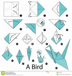 Step By Step Instructions How To Make Origami A Bird  Cartoon Vector