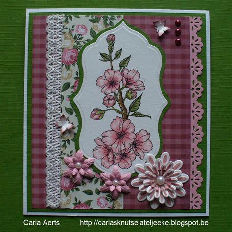 beccys place carlas cherry blossoms