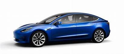 Tesla Hatch Comparison Prototype Opened Ford Focus