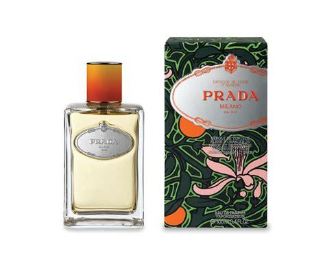 fleur d oranger cuisine infusion de fleur d 39 oranger prada perfume a fragrance
