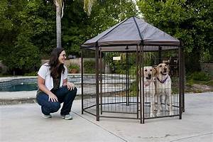outdoor dog pen all pet cages With outdoor dog kennel sizes