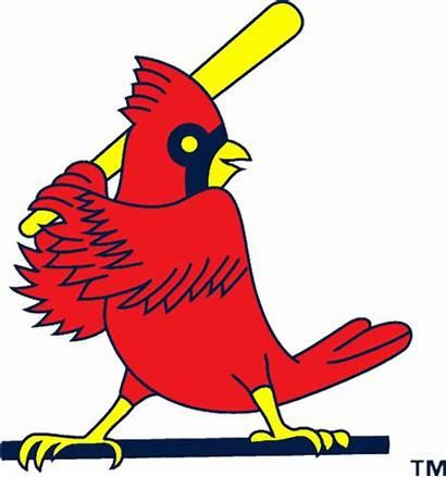 Cardinals Louis Transparent Clip