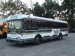 1995 Blue Bird 5018 - Transit Buses