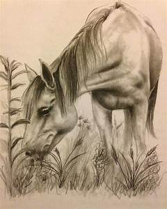 Horse drawing | Horse Happy | Pinterest | Coloring, Pencil ...