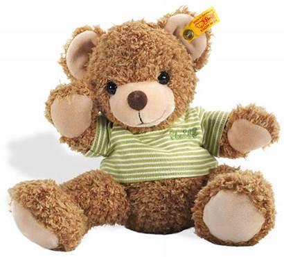 Teddy Bear Bears Steiff Knuffi Transparent Friend
