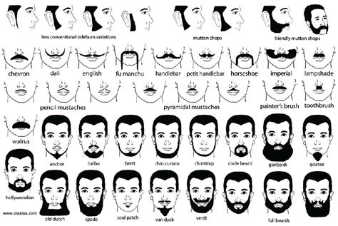Mustache And Beard Styles Moustache Styles