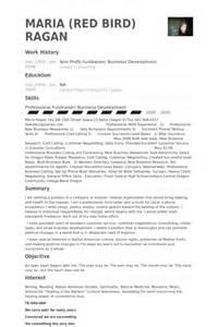 resume non professional experience non profit resume sles visualcv resume sles database