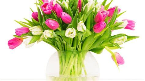 vase für tulpen tipps tulpen im garten richtig pflanzen und pflegen