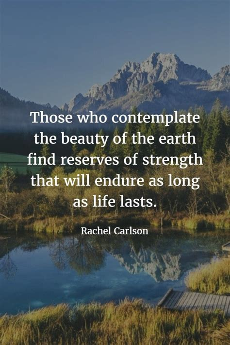 17 Best Images About Nature Quotes On Pinterest  An. Beautiful Quotes Life Hindi. Christmas Quotes Coworkers. Winnie The Pooh Quotes Stronger. Motivational Quotes Yahoo. Bible Quotes About Children. Birthday Upcoming Quotes. Motivational Quotes Students. Quotes On Happy Birthday To Ex Girlfriend