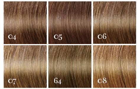 Brown Shades Of Hair by Shades Of Brown Hair Color Hair Colors Idea In 2019