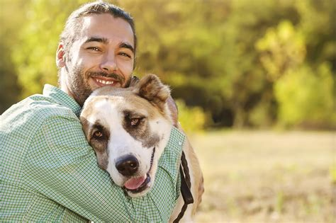 canine therapy  addiction recovery addictioncom