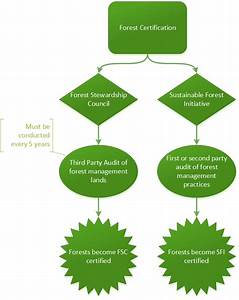 The Path To Certification  Diagram