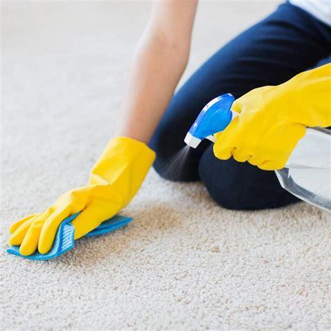 Weißen Teppich Reinigen by Teppich Reinigen Hausmittel Und Tipps Brigitte De