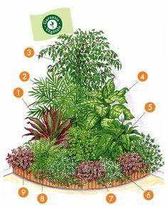 massif d angle de graminees pepiniere plantes With decoration d un petit jardin 15 boule de neige plante en ligne