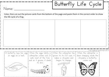 butterfly life cycle a mini cut and paste unit