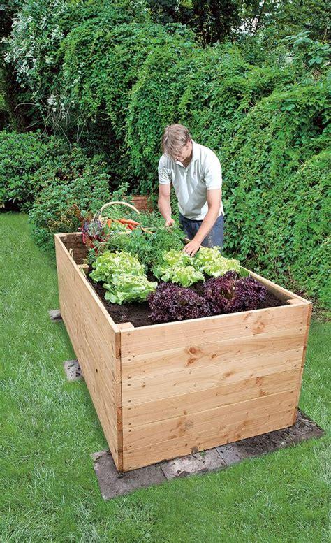 Garten Hochbeet Pflanzen by Hochbeet Bauen Garten Hochbeet Hochbeet Bauen Und