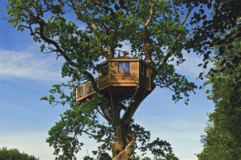 des h 244 tels dans les arbres partout dans le monde nouvelles