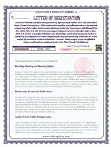 instant service dog registration service dog registry