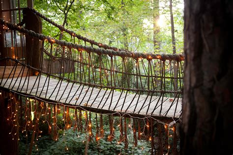 trio  dreamy treehouses linked  bridges colossal