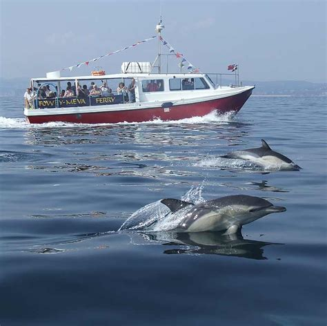 Boat Transport Cornwall by Mevagissey And Fowey Ferry Discover Cornwall