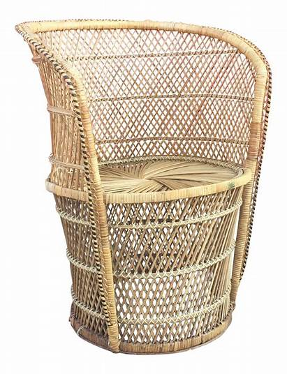 Throne Low Wicker Chair Profile Chairish