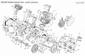 Allumage Fantic 50cc Enfant    Le Guide Vert