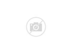 Grace Park Motorcycle