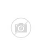 Job Resume Sample Nurse Paramedic Objective