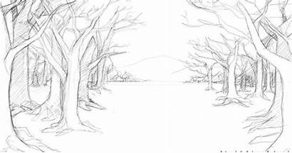 Forest Draw Background Trees Drawing Scenery Coloring