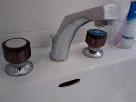 robinet jacob delafon cuisine robinet cuisine jacob delafon mitigeur cuisine chromua