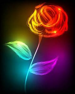 Bright Neon Colors Flowers