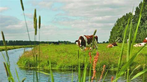 een polderspoordijk anwb wandelen