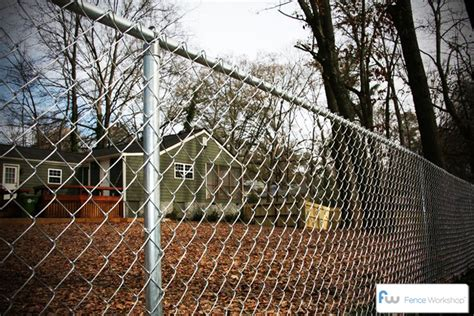 seven cheap garden fence ideas photograph seven